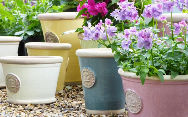 Potted Garden Plants Garden pots kew gardens shop flower pots workwithnaturefo